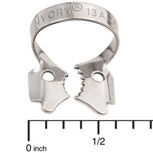 Ivory Stainless Steel Clamps