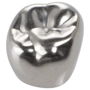 Stainless Steel Permanent Molar Crowns